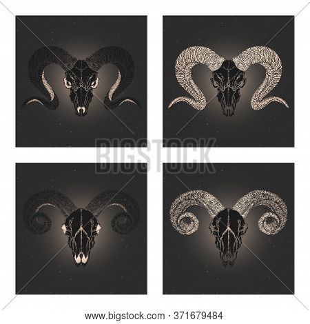 Vector Set Of Four Illustrations With Hand Drawn Black Silhouettes Skulls Rams With Gold Elements On