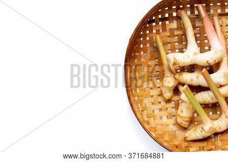 Fresh Galangal On Wooden Bamboo Threshing Basket Background. Copy Space