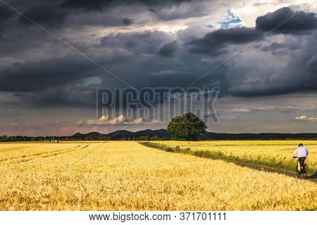 Dramatic Stormy Landscape. A Picturesque Field Against The Background Of An Impending Thunderstorm.
