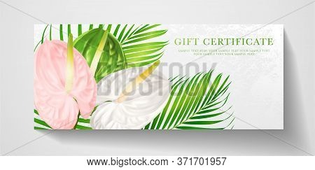 Gift Certificate, Voucher With Tropical Exotic Realistic Asian Flower Bouquet - Anthurium Andraeanum