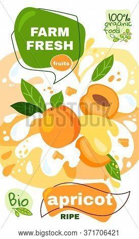 Food Label Template. Vector Illustration For Organic Apricot Milkshake Fruit Drink. Natural Bio Frui
