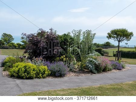 A Flower Bed In Helen Gardens, Eastbourne, Sussex, Uk