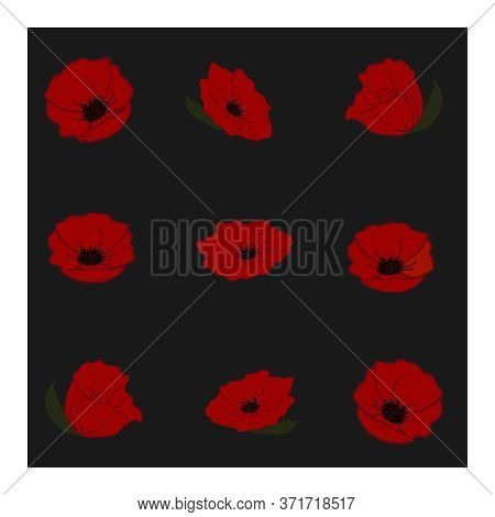 Seamless Pattern With Large Red Poppy Flowers. Floral Pattern. Pattern With Flowers. Large, Large Re