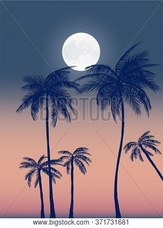 Summer California Tumblr Backgrounds Set With Palms, Sky And Sunset. Summer Placard Poster Flyer Inv