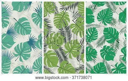 Trendy Tropical Seamless Pattern With Exotic Jungle Leaves Monstera And Palm Trees, Vector Set Of Il