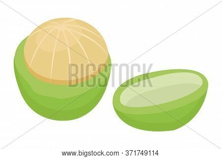 Macadamia Nut Isolated On White Background. Small Core Inside Cracked Nutshell. Edible Product Used
