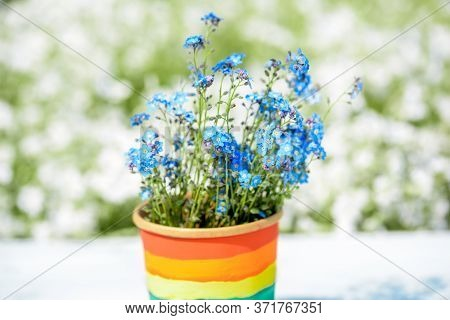 Multi Colored Drawing By Paints. Potted Rainbow, Young Sprouts, Colorful Flower.multi-colored Drawin