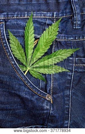 Cannabis Leaf On Blue Jeans Background. Hemp And Denim.