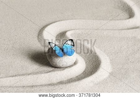 Japanese Zen Garden Meditation Stone With Butterfly, Concentration And Relaxation Sand For Harmony A