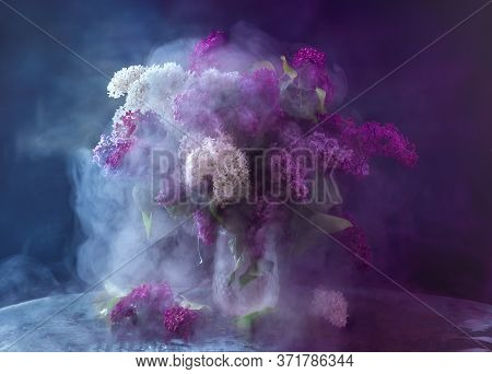 Lilac. Bright Multi-colored Lilac In A Crystal Vase. Lilac Branches Of Different Colors Are Collecte