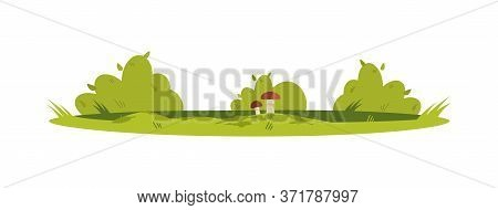 Foliage Semi Flat Rgb Color Vector Illustration. Rural Countryside Ground With Bushes And Grass. Shr