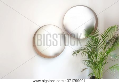 Two Oval Round Mirrors On White Wall With Green House Plant Modern Interior, Blurred Mirrors Retro D
