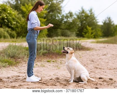 Obedience Concept. Young Girl Teaching Her Golden Retriever To Sit Down, Playing On The Beach, Copy