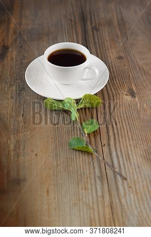 Elegant White Cup Of Hot Drink In Porcelain Tea-set On Brown Rustic Wooden Table, Fresh Green Mint S
