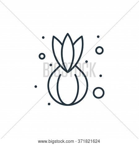 onion icon isolated on white background from  collection. onion icon trendy and modern onion symbol