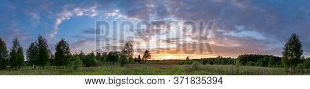 Sunset Landscape Panorama Of Summer Meadow With Green Grass In Evening Twilight Under Blue Sky With
