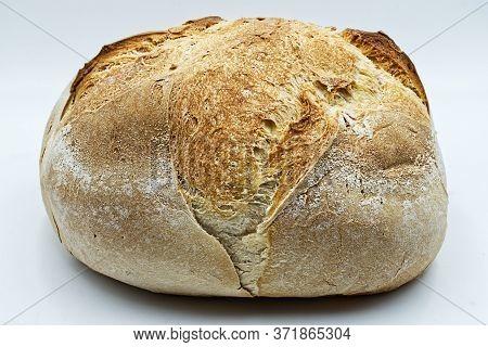 Traditional Altamura Italian Bread. Pane Pugliese. Studio Shot