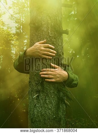 Hands Around An Old Tree Trunk, Hugging In Magical Green Forest, Environmental Concept