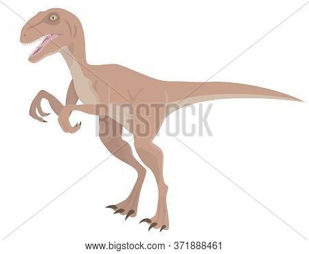 Velociraptor In Cartoon Style. Predatory Dinosaur Isolated On White Background.