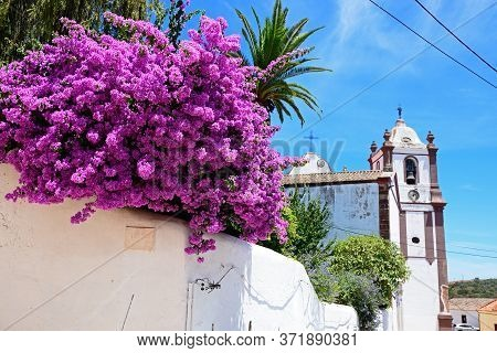 View Of The Gothic Cathedral (igreja Da Misericordia) With Bougainvillea In The Foreground, Silves,