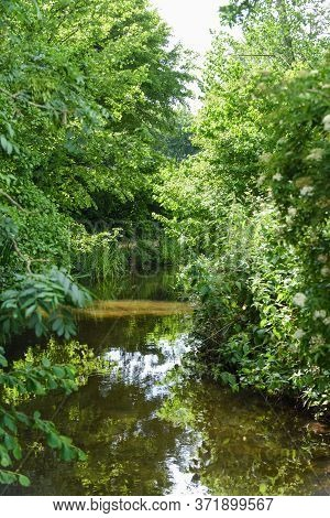 Calm River Running Through Nature Reserve In English Countryside