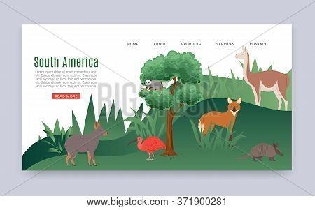 Inscription South America, Colorful Web Banner, Continental Jungle, American Mammals, Wildlife, Cart