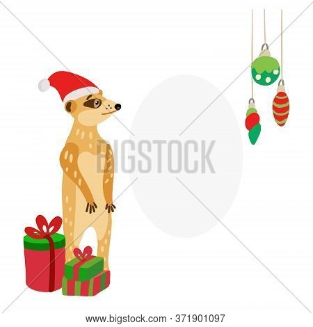 Cute Meerkat Wearing Santa Hat With Gifts. Suricata Suricatta Is Ready To Celebrate Christmas Or New