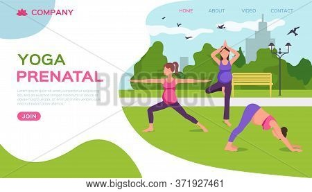 Yoga In Park Nature, Vector Illustration. Pregnant Female Fitness, Mother Health Lifestyle And Mater
