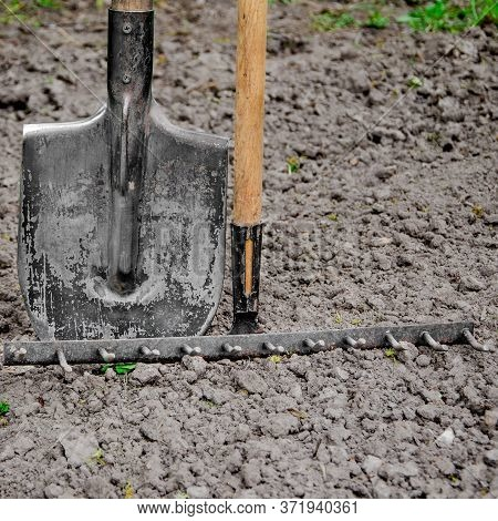 Tools For Gardening Stand In The Garden On Fertile Land