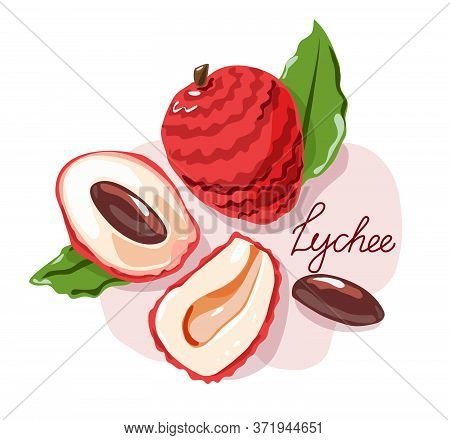 Lychee Fruit And Peeled Lychees. Vector Illustration. Isolated Objects.