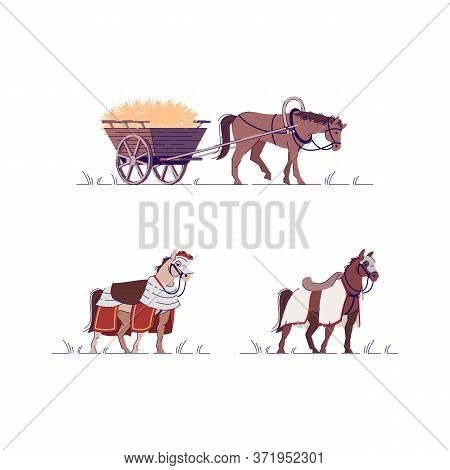 Medieval Livestock Semi Flat Rgb Color Vector Illustration Set. War Crusader. Fighter Tournament. Wo