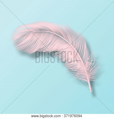 Vector 3d Realistic Falling Pink Fluffy Twirled Flamingo Feather Icon Closeup Isolated On Blue Backg