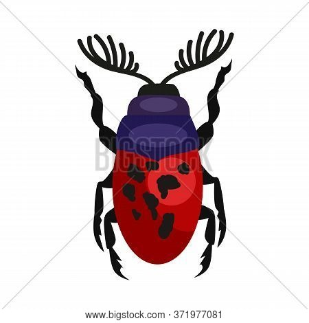 Red Spotted Stag Beetle Isolated . Bug, Leaf Beetle, Entomology. Insects Concept. Can Be Used For To