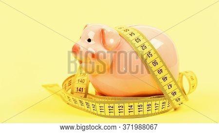 Measure Costs. Piggy Bank And Measuring Tape. Budget Limit Concept. Economics And Finances. Pig Trap