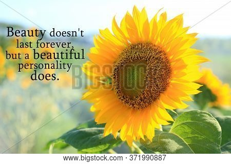 Inspirational Quote - Beauty Does Not Last Forever, But A Beautiful Personality Does. With Sunflower