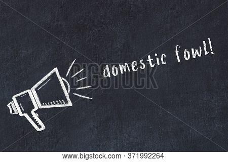 Chalk Drawing Of Loudspeaker And Handwritten Inscription Domestic Fowl On Black Desk