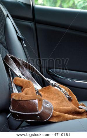 Bag In A Car