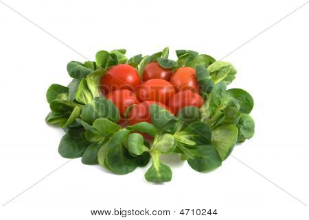 Salad And Tomatos