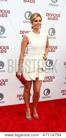 LOS ANGELES - JUN 17:  Brianna Brown arrives at the