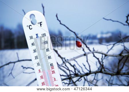 Temperature In Winter