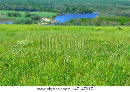 Steppe in nature reserve