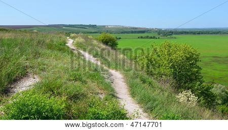 The trails in the nature reserve