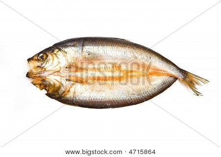 Traditional smoked kipper isolated on a white studio background. poster