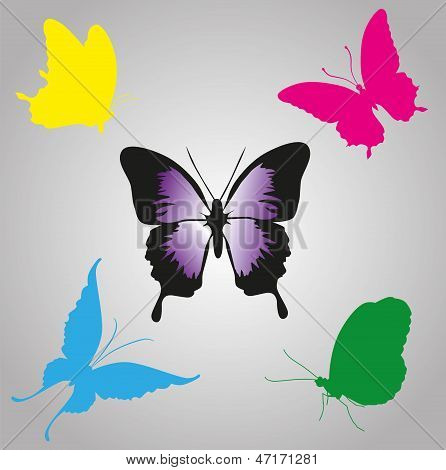 Colorful Vector Butterflies