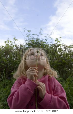 Young Female Blowing Dandelion Seeds,