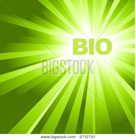 Bio / Eco / Organic Poster