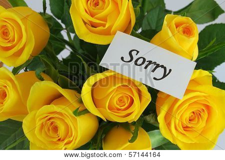 Sorry card with beautiful yellow roses