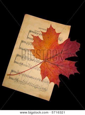 Music And Autumn Leaf