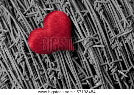 Heart over a barbed wire