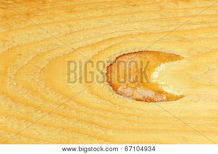 Wood Plank With Knot Close-up
